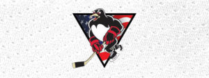 PENS TO SUPPORT RED CROSS' HOLIDAYS FOR HEROES