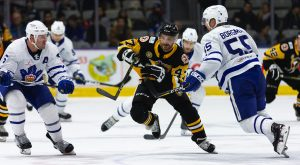 PENGUINS FALL IN HIGH-FLYING AFFAIR WITH MARLIES