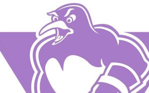 PENGUINS SUPPORTING HOCKEY FIGHTS CANCER THIS NOVEMBER