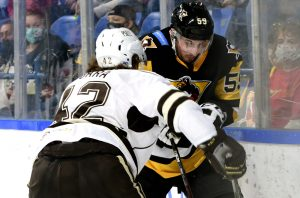 PENGUINS FALL IN CLOSE BATTLE WITH BEARS, 3-1