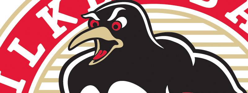 Penguins 2004 Logo