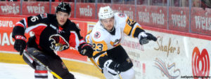 Read more about the article PENGUINS WEEKLY – 1/31/17