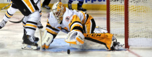 Read more about the article PENGUINS WEEKLY – 3/28/17