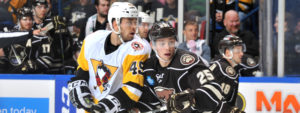 Read more about the article PENGUINS WEEKLY – 10/31/17