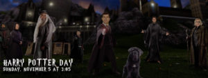 Read more about the article HARRY POTTER DAY WITH THE PENGUINS
