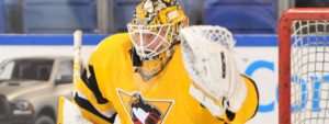Read more about the article JARRY RECALLED BY PITTSBURGH