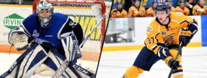 Read more about the article PENGUINS SIGN ALEX D'ORIO AND JAN DROZG TO ATOs