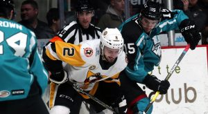 PENGUINS UPENDED BY CHECKERS, 5-3