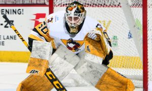 Read more about the article EMIL LARMI REASSIGNED TO WHEELING