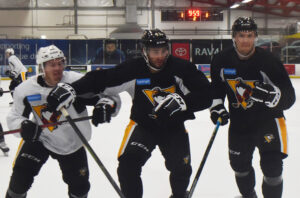 Read more about the article PENGUINS HOPE TO BENEFIT FROM CROWDED, COMPETITIVE BLUE LINE